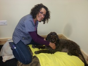 Nancy Shults, Animal Massage Therapist