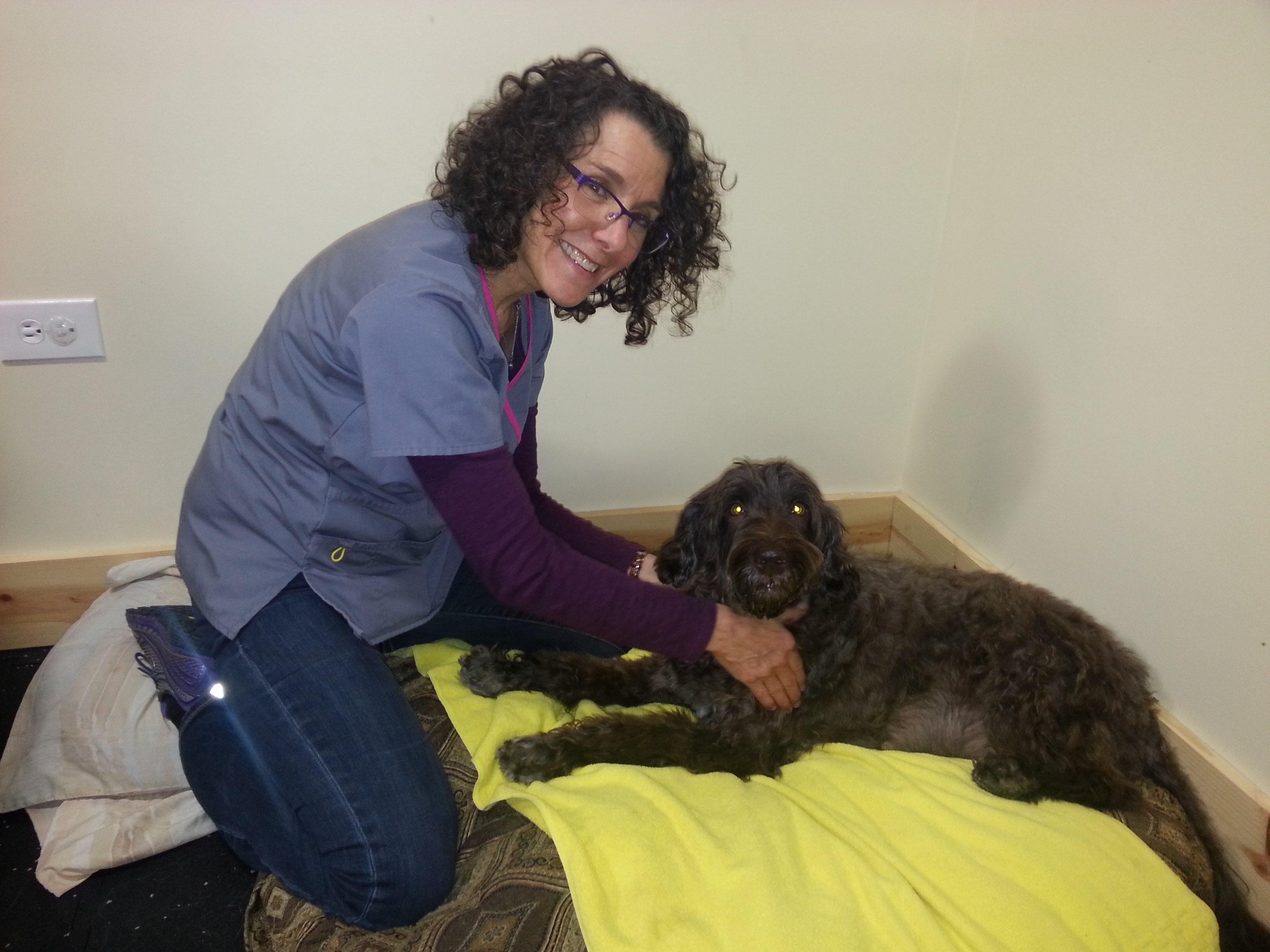 Massage Therapy Royal Treatment Veterinary Center