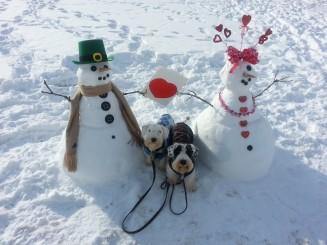 Valentine Snowdogs